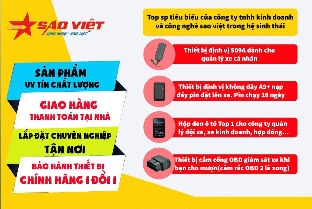 định vị Sao Việt JSC